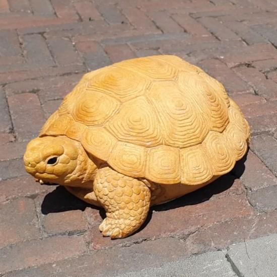 Черепаха декор садовий
