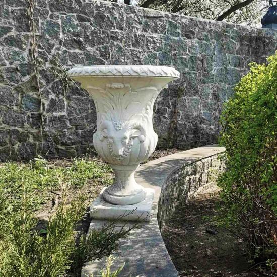 Bowl of Capricornio