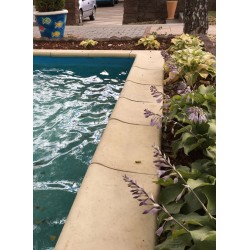 Камінь для басейну