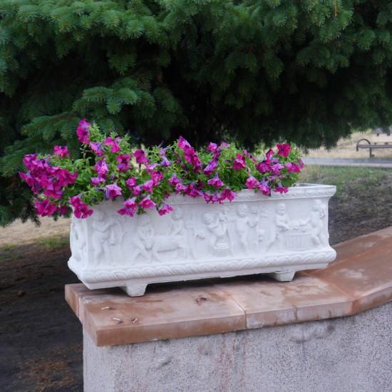 Квітник Вендіміа